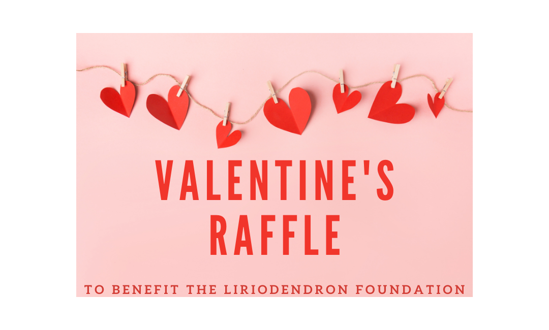 Valentine's Raffle to Benefit the Liriodendron Foundation